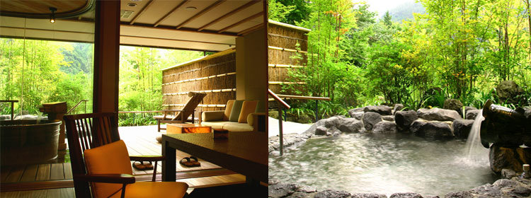 Stay at the Hakone Ginyu Ryokan in Japan